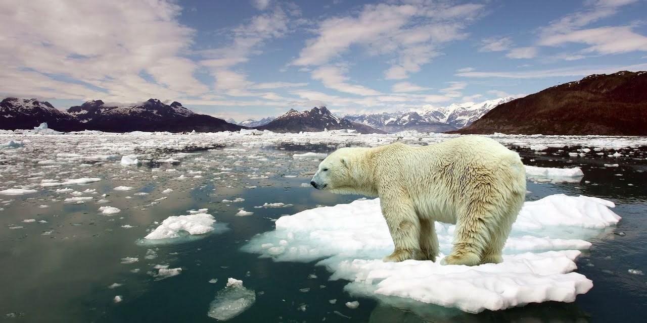 Les océans se réchauffent rapidement et nos vies sont sur le point de changer