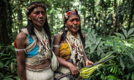 Indigenous peoples may be the Amazon's last hope