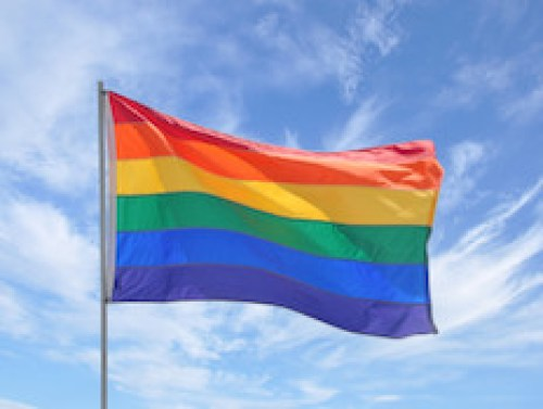 The rainbow flag of the gay pride movement.
