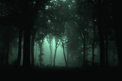 remu warrior night scene 3