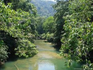 Rio Sarstun Guatemala river