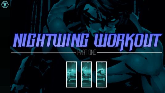 Nightwing Training