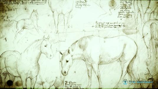 Da Vinci's Horse