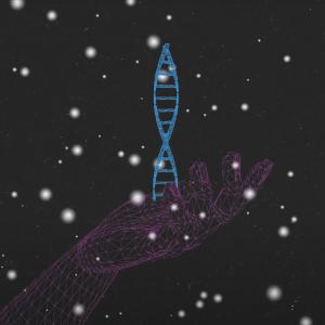 DNA sirtuins NAD+