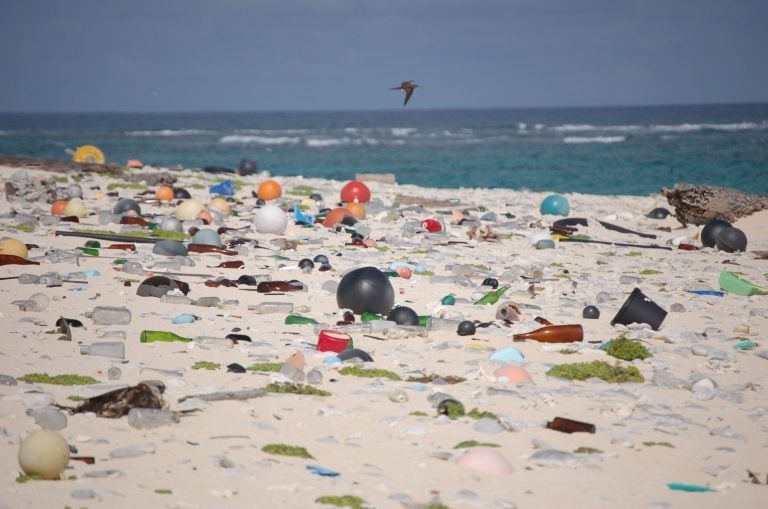 We Need To Face Our Other Global Environmental Catastrophe: Plastic Pollution