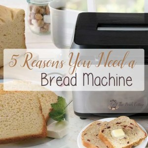 5 Reasons You Need a Bread Machine {and a recipe for English Muffin Bread}