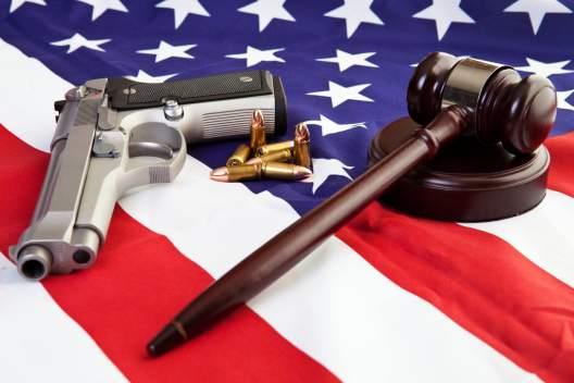 A Modest Proposal For Gun Control The Bird On Fire