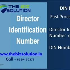 Director Identification Number eKYC DIR 3 DIN Number KYC