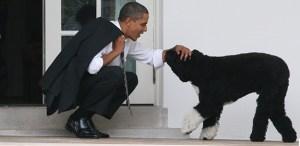 ObamaPet2-Post