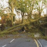 trees fallen in the road as a result of the Great Storm of 1987