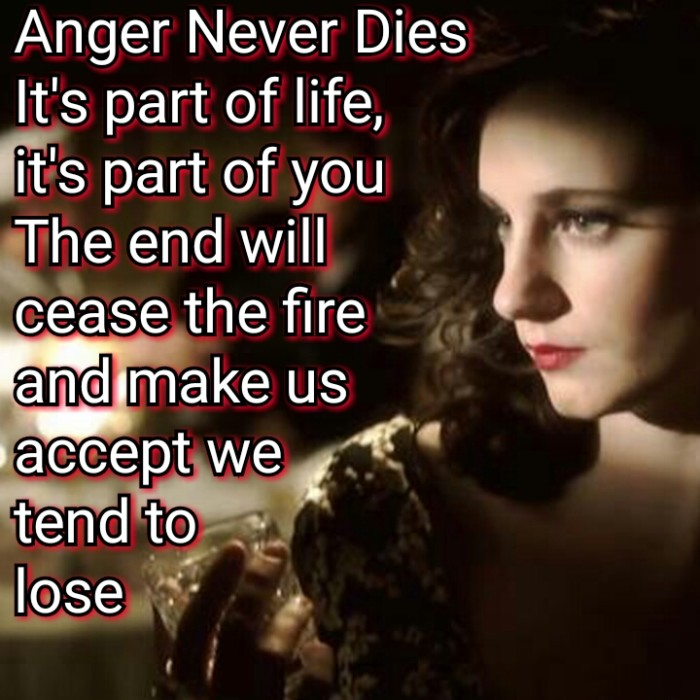 Anger Never Dies Hooverphonic