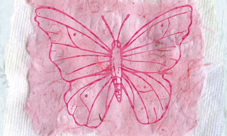 How We Remember: The Butterfly Project: Part 1