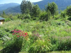 Mandala garden at Spiral Farm in the Slocan Valley of the Kootenay's