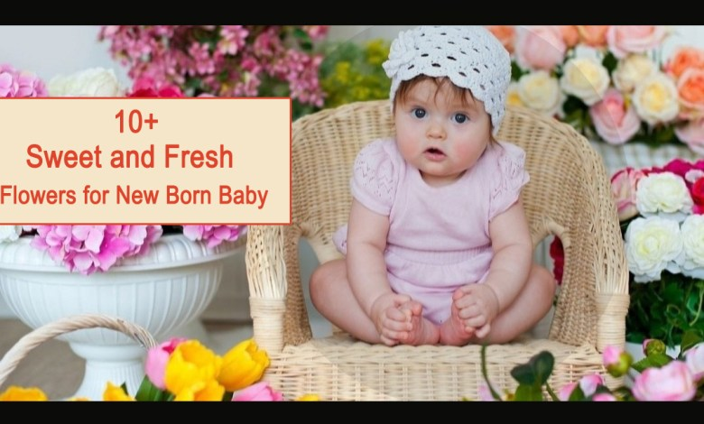 newborn baby flowers- 10+ Sweet and Fresh Flowers for New Born Baby