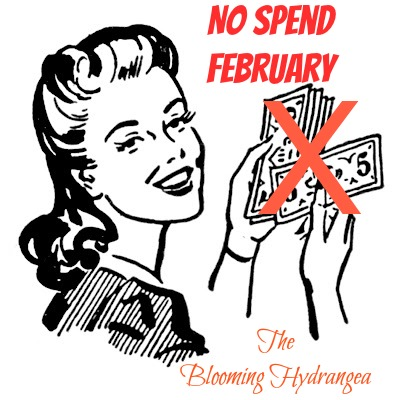 No Spend Month Saving Money