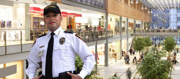 Private Security Companies Nashville Tn