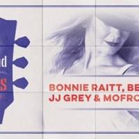 """Holland International Blues Festival 3 & 4 Juni - Grolloo: """"Het verschil tussen een bak herrie en echte muziek."""""""