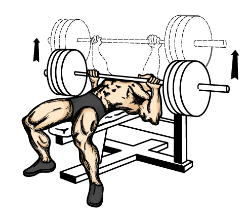 bench press correctly