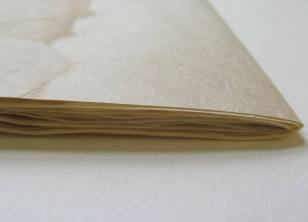 New sections created by repairing the folios using archival tissue