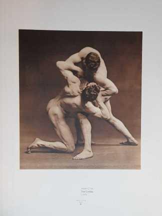 The Body - Male Figure