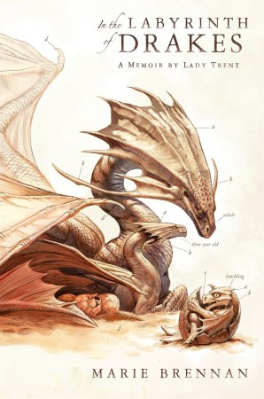 Labyrinth of Drakes