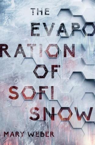 Evaporation of Sofi Snow