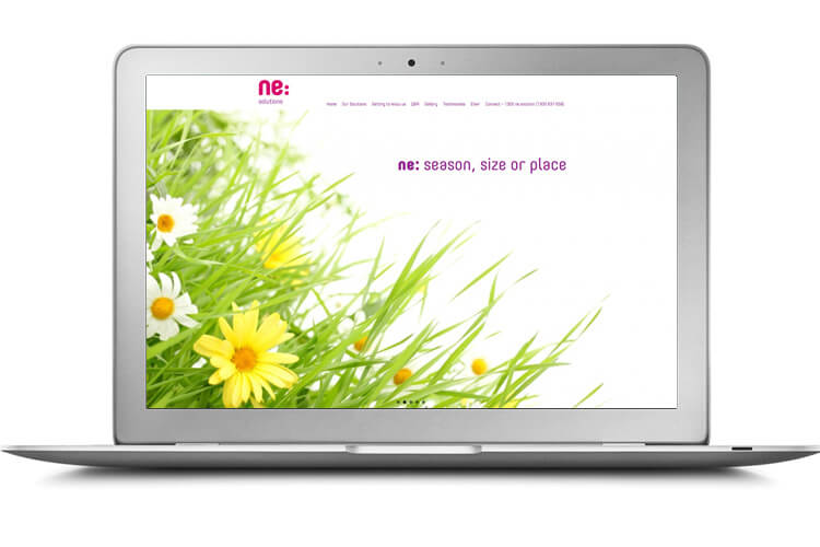 ne:Solutions Website Example
