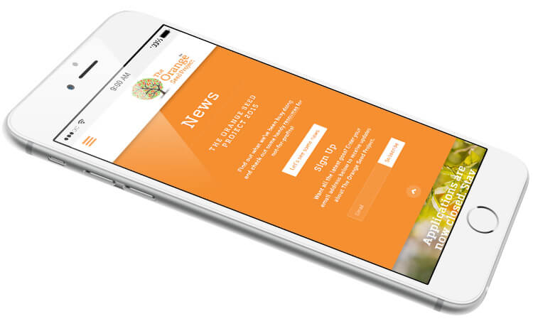The Orange Seed Project Mobile Responsive Website
