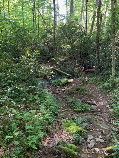 Hiking on Caldwell Fork