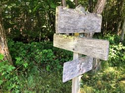 Old Trail Signs at Double Gap