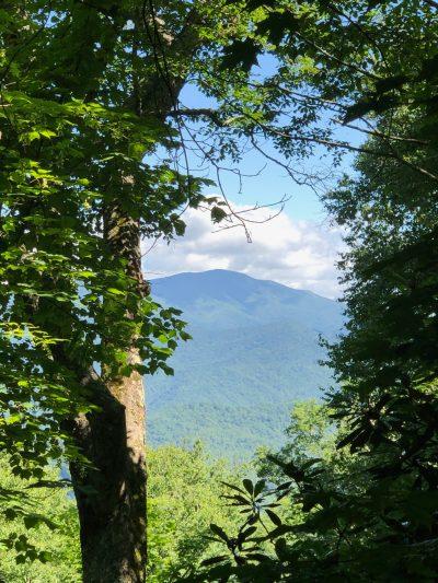 Mt. Sterling seen from the Hemphill Bald Trail