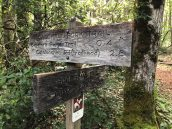 Trail Signs on the Caldwell Fork Trail