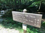 Caldwell Fork Trailhead Sign