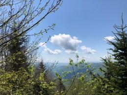 The View into North Carolina