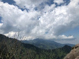 Mt. LeConte seen from Charlie's Bunion