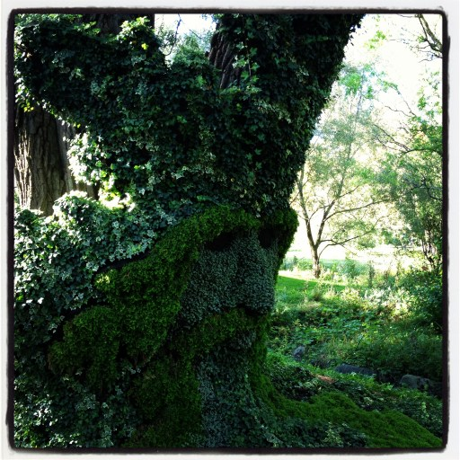 Ent Topiary