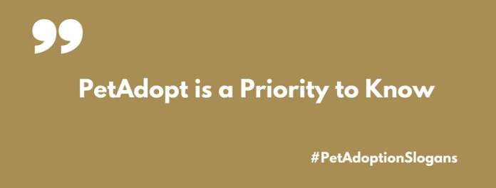 pet adoption slogans