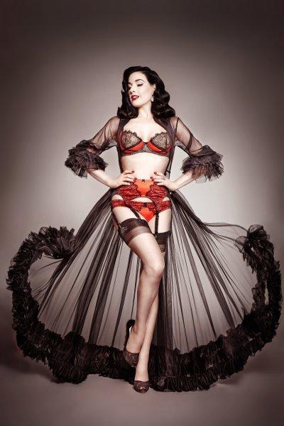 rsz_dita_von_teese_lingerie_man_catcher_high_res