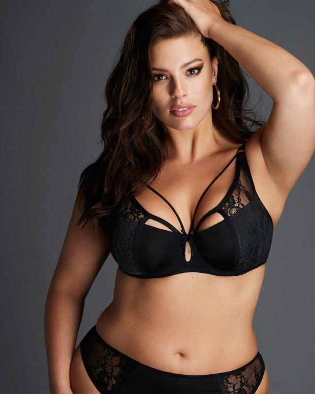 harness bras