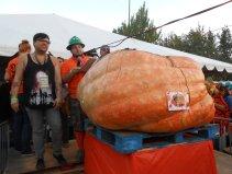 gpbf14-pumpkin-supervision