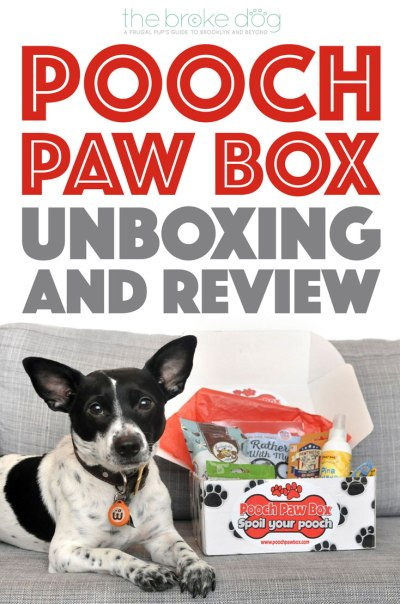 Henry and I review, Pooch Paw Box, a dog subscription box service, and show you what's inside our box!