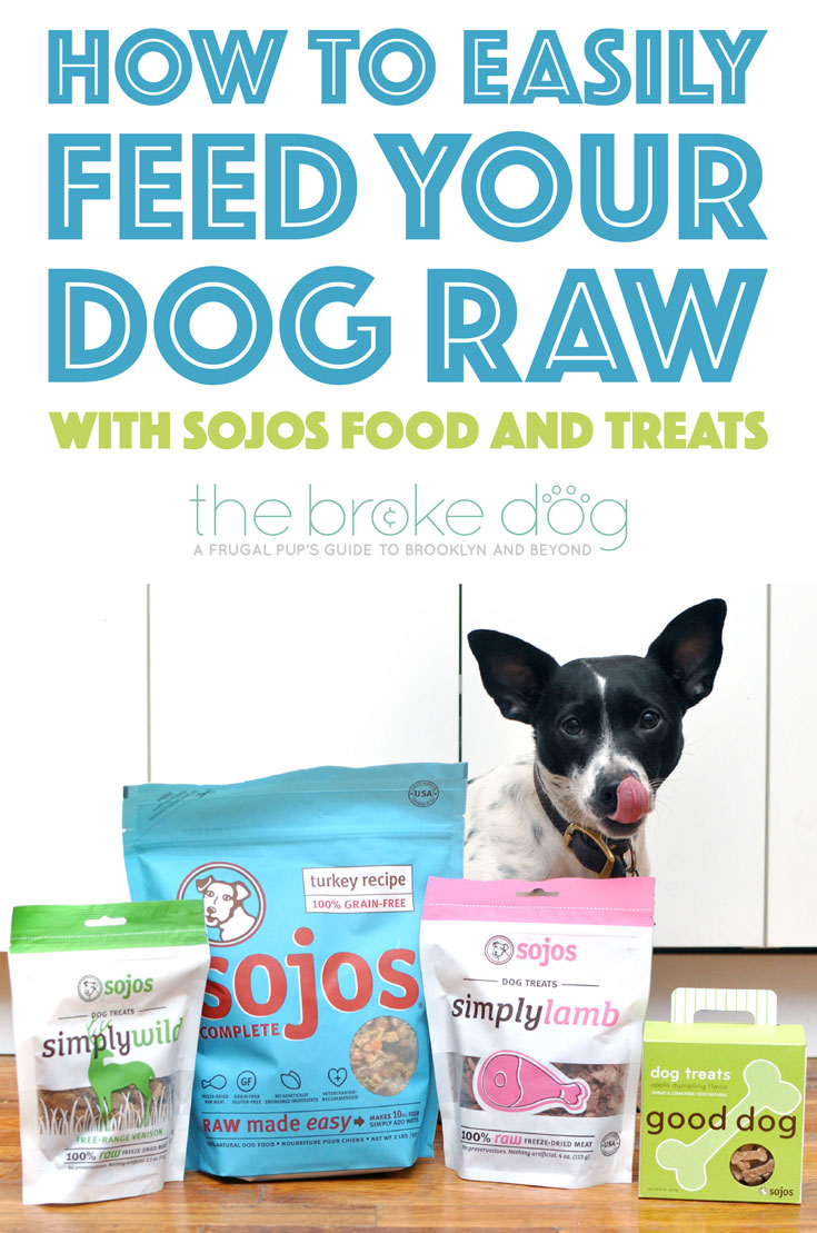 How to easily feed your dog raw with sojos complete the broke dog solutioingenieria Images