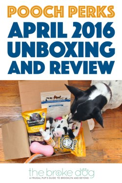 The Pooch Perks April 2016 Barnyard Party box was cute, true to its theme, and a great money-saver. Check out what we received and use code BROKEDOGBLOG to save 10% off your own subscription!