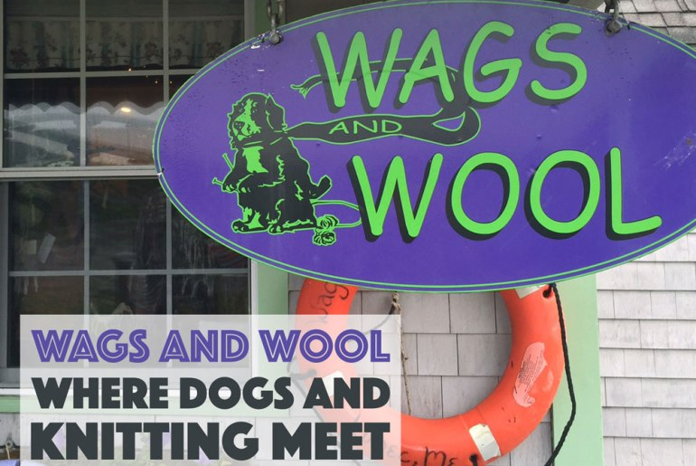 Did you know there is a store that combines knitting and dogs? It's called Wags and Wool, and it's my new favorite store! Check it out to learn more and win some goodies I picked up at the store!