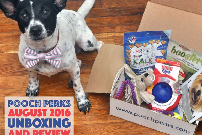 Is your dog a world champion athlete? They will feel like one with this month's Pooch Perks box, which is perfect for your gold medal winner in training!