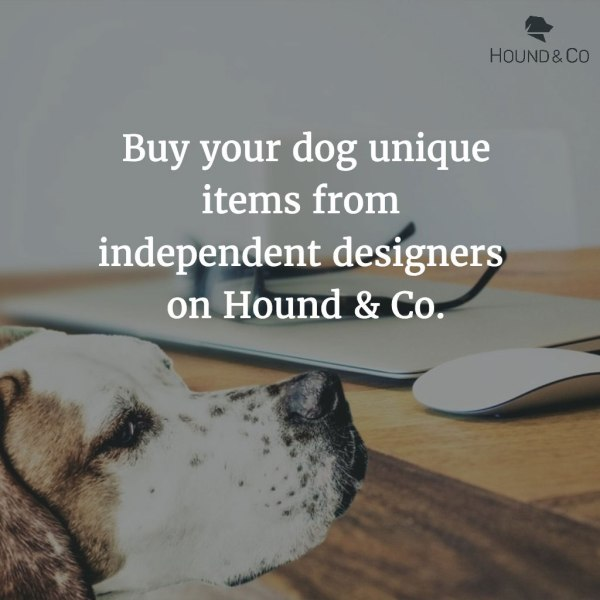 """Hound & Co is a new online marketplace dedicated to all things dog! We interviewed founder Laura Green about Hound and Co's start, how Hound & Co helps """"dogpreneurs"""" and rescues, her own hound, and more!"""