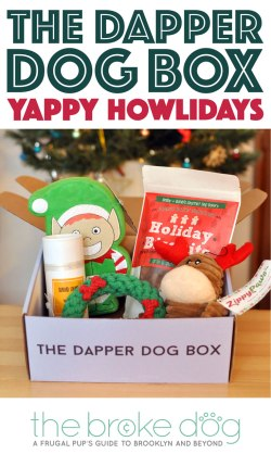 "'Tis the season for holiday cheer! You'll find plenty of cheer in The Dapper Dog Box's December ""Yappy Howlidays"" box, which is stuffed with great goodies!"