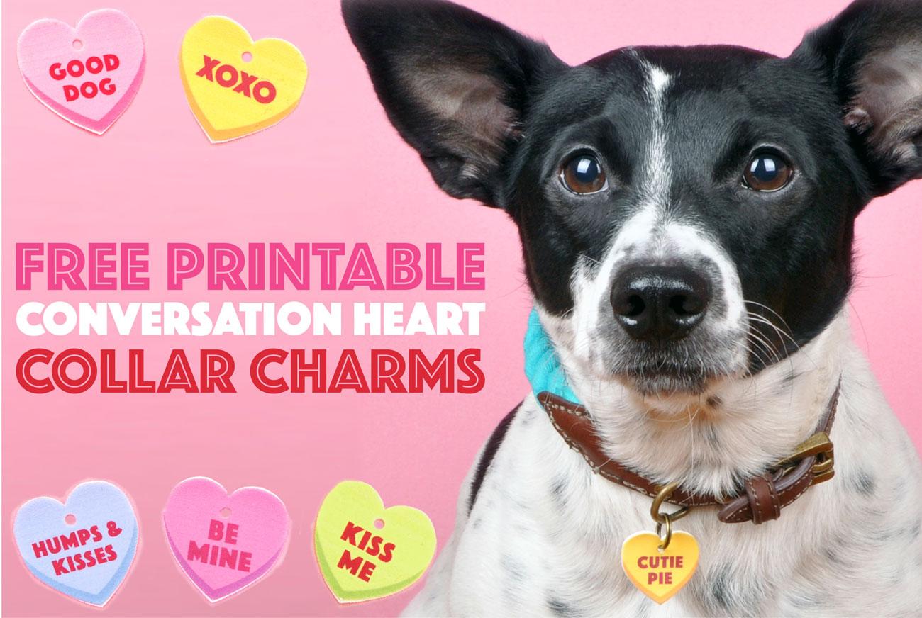 free printable conversation heart collar charms the broke dog