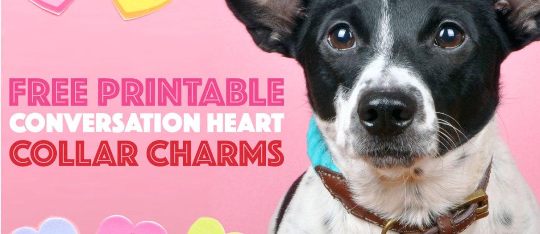 Free Printable Conversation Heart Collar Charms
