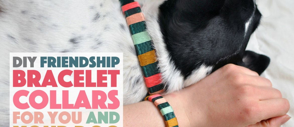 DIY Friendship Bracelet Collars For You and Your Dog